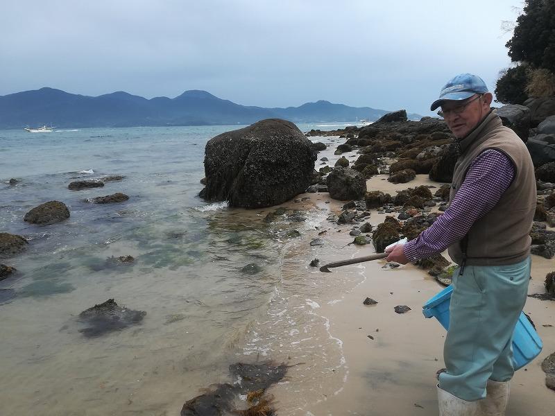 糸島のわかめ取りができる海岸