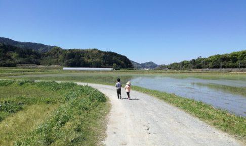 福吉の田んぼのあぜ道を歩く子どもたち