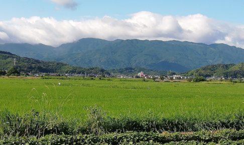 背振の山並みを南に眺めた糸島の田んぼ