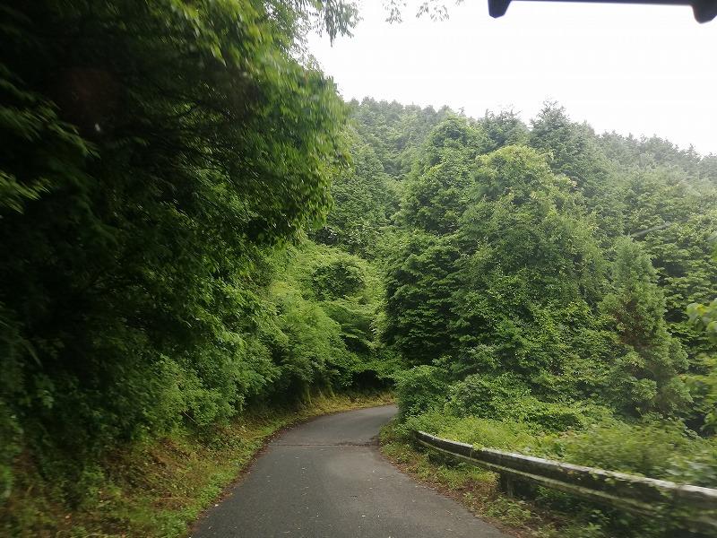 フォレストアドベンチャー・糸島までの道のりの途中の道路の様子