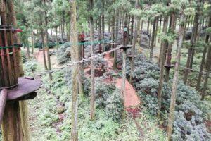 フォレストアドベンチャー糸島の自然共生型アトラクション