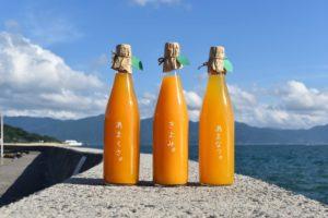 糸島甘夏堂のきよみ、あまなつ、あまくさのジュースと福の浦漁港