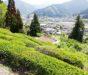 美里町のフットパス体験